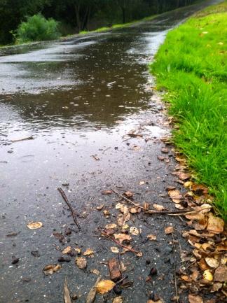 Rain Oakland 2012