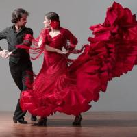 Flamenco que ¡Quita los sentioooss!