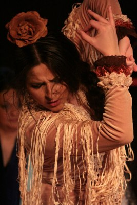 Bring me passion, the Flamenco passion!