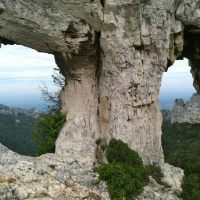 3 Reasons to Visit Saint Rémy de Provence.