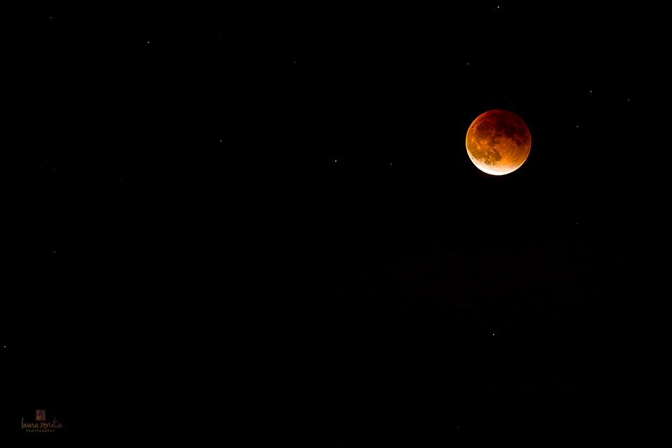 blood moon eclipse san francisco - photo #9