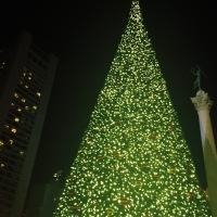 Merry Christmas! - Feliz Navidad!