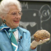 Dr. Marion Diamond, as Remarkable as the Brain She Holds in Her Hands.