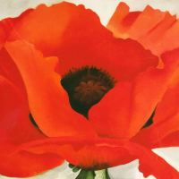 American Painter Georgia O'Keeffe was born on a day like today, November 15th