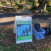 Volunteer Opportunity For Those Who Love Golden Gate Park!