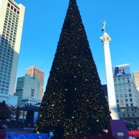 The Macy's Tree in Union Square Sets the Tone for the Holiday Season